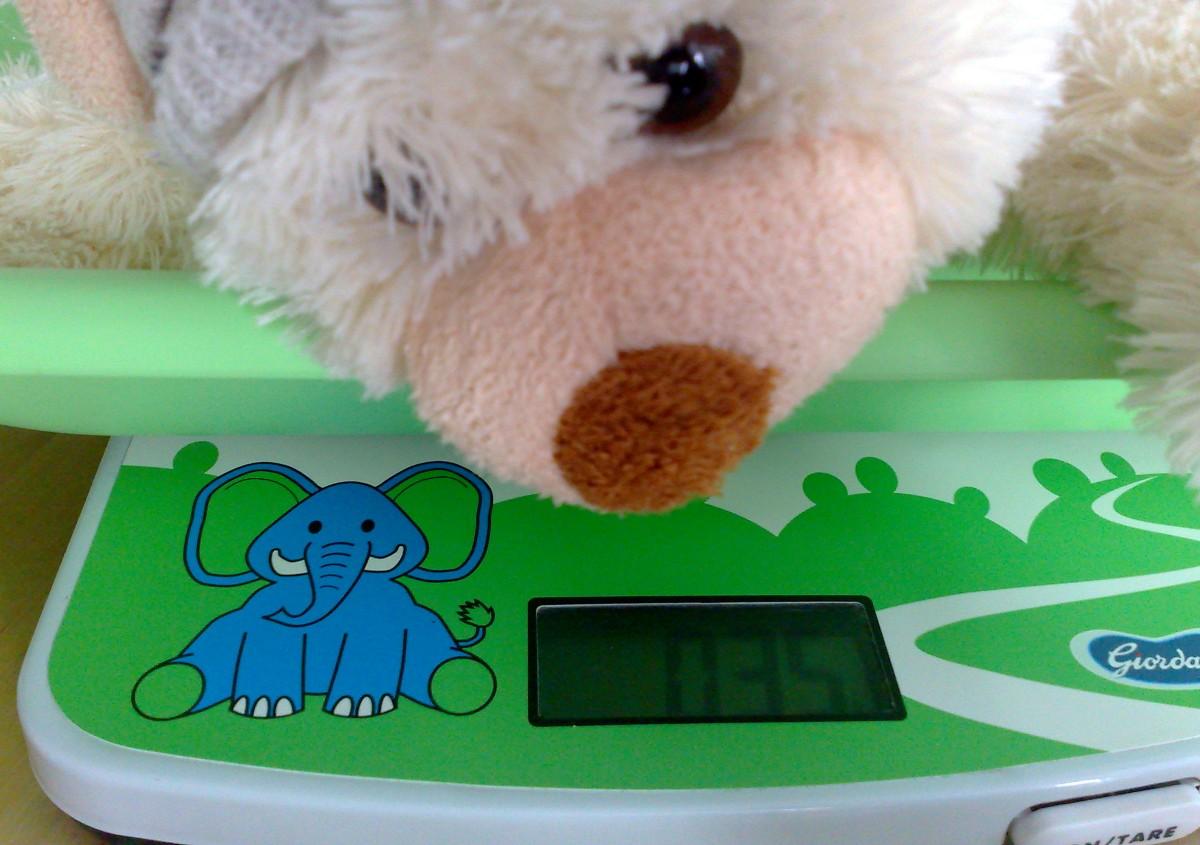 How much should a newborn grow?
