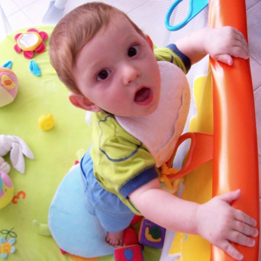 Il bambino dai 7 ai 9 mesi
