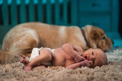 Ambienti naturali nel contesto urbano e microbiota intestinale nei neonati